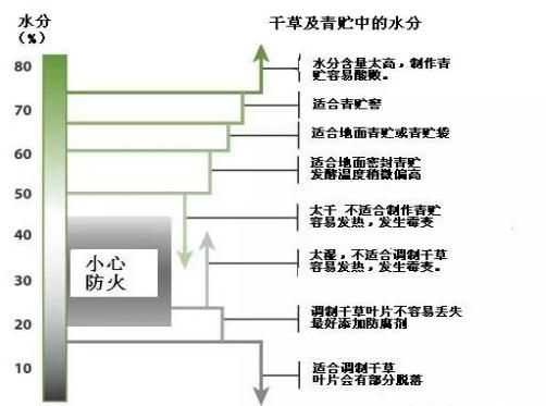 天津苜蓿青贮制作及投入产出比