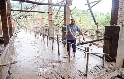 水灾过后,肉牛疫病防控需要注意什么?