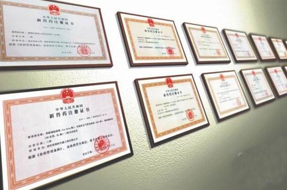 国家兽药生产许可证信息管理系统上线运行