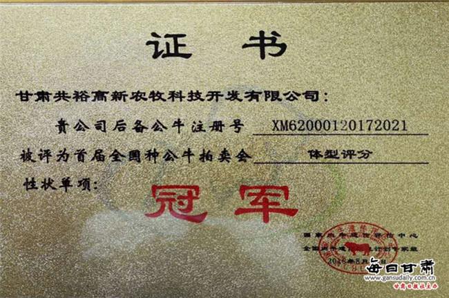 张掖肉牛荣获首届全国种公牛拍卖会两项冠军