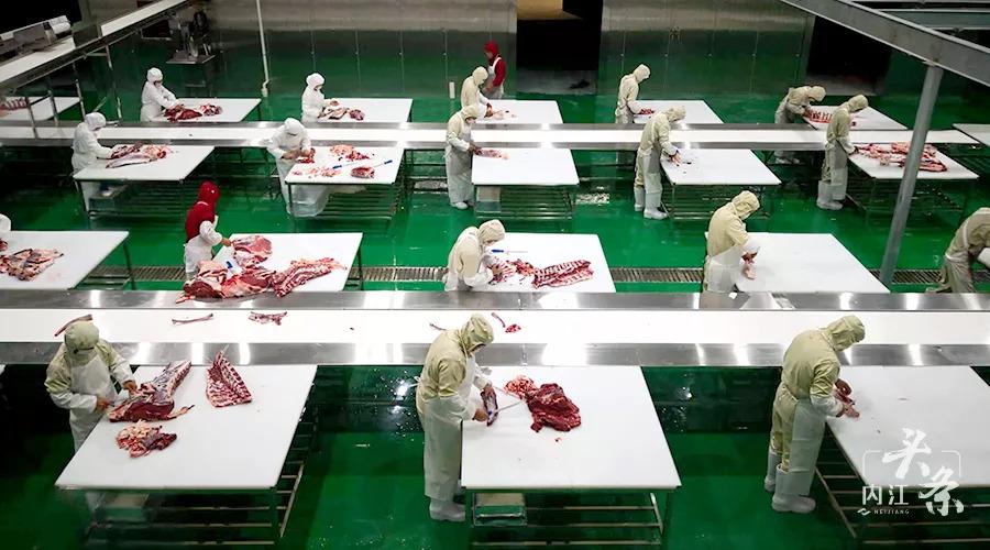 年产值22亿!四川内江最大自动化肉牛加工企业正